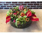 Cherry Hill Flowers - Tropical Elegance - Moorestown Flower Shoppe