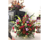 BGF4853 in Buffalo Grove IL, Blooming Grove Flowers & Gifts