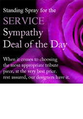 Sympathy ''Deal of the Day'' Standing Spray in Omaha NE, Stems Omaha