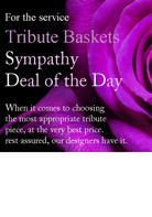 Sympathy ''Deal of the Day'' Basket Arrangement in Omaha NE, Stems Omaha