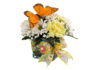 Spring Butterfly Cube Bouquet