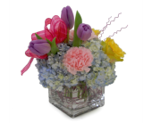 Mother's Day Out in Nashville TN, Emma's Flowers & Gifts, Inc.