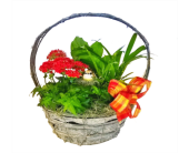Country Garden Basket in Santa Cruz CA, Ferrari Florist