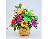 Indianapolis Flowers - Graceful Flight - Gillespie Florists