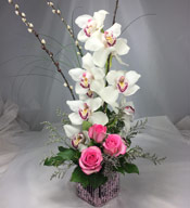 CYMBIDIUM ORCHID & ROSE ELEGANCE by Rubrums in Ossining NY, Rubrums Florist Ltd.