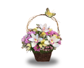 Montville Flowers - Orchids and Vines - Petals Of Pine Brook
