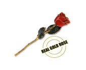 Real Gold Rose in Aston PA, Minutella's Florist