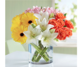 Modern Spring Mix in Pittsburgh PA, Eiseltown Flowers & Gifts
