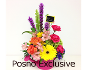 Colourburst in London ON, Posno Flowers