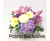 Soft Melody in London ON, Posno Flowers