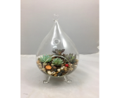 Succulent Glass Standing Terrarium in Wichita KS, Tillie's Flower Shop