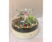 Terrarium in Wichita KS, Tillie's Flower Shop