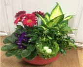 Grateful Garden in Fargo ND, Dalbol Flowers & Gifts, Inc.