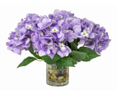 Hydrangea on Rocks in Spruce Grove AB, Flower Fantasy & Gifts
