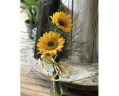 Sunflower in Creedmoor NC, Gil-Man Florist Inc.