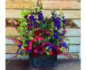 Garden Dreams in Springdale, Arkansas, Organic Creations at Country Gardens