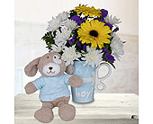 It's a Boy Mug with Stuffed Animal in Dallas TX, In Bloom Flowers, Gifts and More