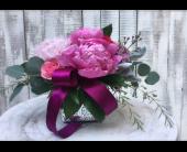 Rancho Cordova Flowers - Jules - G. Rossi & Co.