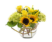 Brockton Flowers - Sunshine Rays - The Hutcheon's Flower Co.