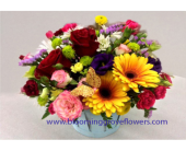 GFG1431 in Buffalo Grove IL, Blooming Grove Flowers & Gifts