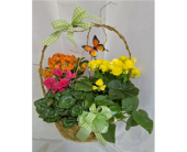 Bloomin' Basket in Grand Rapids MN, Shaw Florists