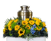 Sunflower Cremation in Baltimore MD, Raimondi's Flowers & Fruit Baskets
