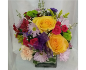 Happy Day in Grand Rapids MN, Shaw Florists