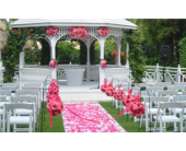 Wedding in San Antonio, Texas, Blooming Creations Florist