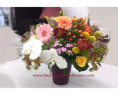 Arlington Heights Flowers - GFG1784 - Blooming Grove Flowers & Gifts
