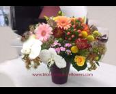 Northbrook Flowers - GFG1784 - Blooming Grove Flowers & Gifts