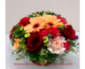 Northbrook Flowers - GFG4886 - Blooming Grove Flowers & Gifts