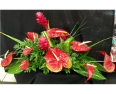 MTF802 Tropical Long And Low Arrangement in Mililani Town HI, Mililani Town Florist