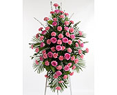 Roses & Carnations Easel in Dallas TX, In Bloom Flowers, Gifts and More