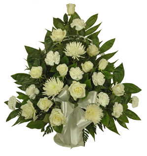 RUSH DELIVERY: Simple Devotion Fuji and Carnations in Arlington Heights IL, Sylvia's - Amlings Flowers
