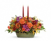 Teleflora's Country Sunrise Centerpiece in Lake Worth FL, Belle's Wonderland Orchids & Flowers