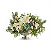 Teleflora's Winter Wilds Centerpiece in Bradenton FL, Tropical Interiors Florist