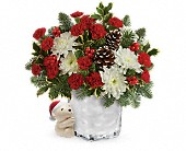 Send a Hug Bear Buddy Bouquet by Teleflora in Mississauga ON, Flowers By Uniquely Yours