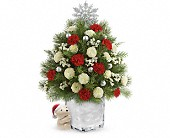 Send a Hug Cuddly Christmas Tree by Teleflora in Mississauga ON, Flowers By Uniquely Yours