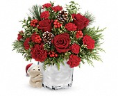 Send a Hug Winter Cuddles by Teleflora in Woodbridge NJ, Floral Expressions