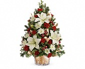 Teleflora's Golden Pines Tree in Bradenton FL, Tropical Interiors Florist