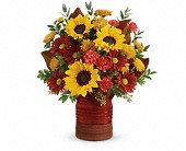 Teleflora's Sunshine Crock Bouquet in St. Clair Shores MI, DeRos Delicacies