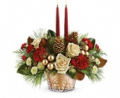 Teleflora's Winter Pines Centerpiece in Fairfield CA, Rose Florist & Gift Shop