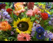 Designer's Choice Summer in Richboro, Pennsylvania, Fireside Flowers