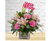Delicate Touch for Birthdays in Dallas TX, In Bloom Flowers, Gifts and More