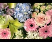 Designer's Choice Soft & Pastel  in Richboro, Pennsylvania, Fireside Flowers