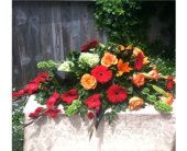 Ray of Light Collection in Arcata, California, Country Living Florist & Fine Gifts
