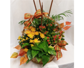 Fall Harvest Basket in Grand Rapids MN, Shaw Florists