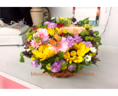 GFG2073 in Buffalo Grove IL, Blooming Grove Flowers & Gifts