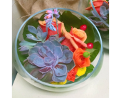 Succulent Color Bowl in Redmond WA, Bear Creek Florist