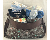 Diaper Bag Elegance in St Clair Shores MI, Rodnick
